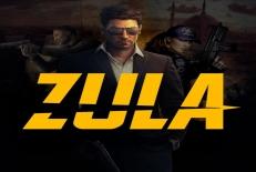زولا پرو